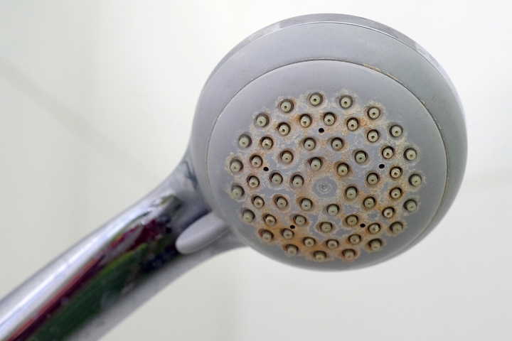 Unclog the shower head